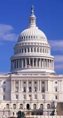 Capitol 2 128x241 custom NAPE Public Policy Agenda